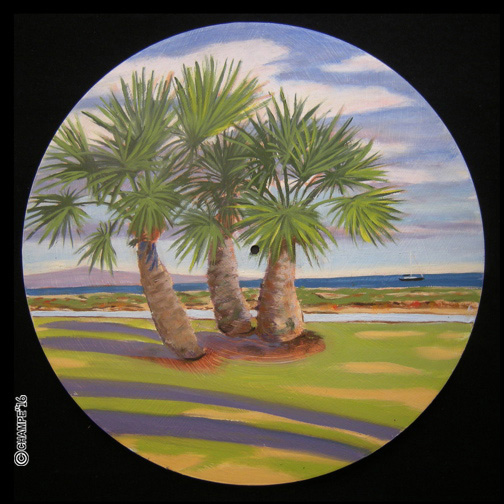 688 R9 three small palms  7x7x72